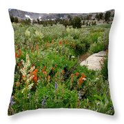 Wildflowers On Display Throw Pillow