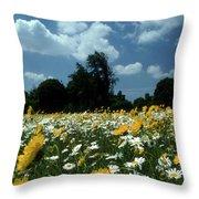Wildflowers Throw Pillow
