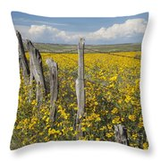 Wildflowers Surround Rustic Barb Wire Throw Pillow