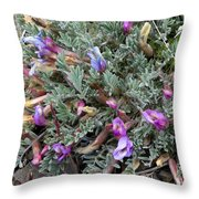 Wildflowers - Woolly-pod Locoweed Throw Pillow