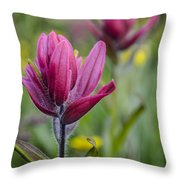 Wildflowers5 Throw Pillow