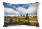 Wildlife Pond - Bethlehem New Hampshire Usa Throw Pillow