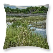 Wildlife Refuge Reflections Throw Pillow