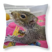 Wildlife Rehabilitation Throw Pillow