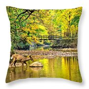 Wildlifes Thirst Throw Pillow