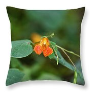 Wildly Orange Throw Pillow