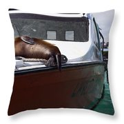 Will Sleep Anywhere Throw Pillow