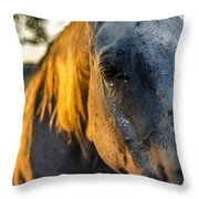 Will You Be Back Tomorrow Throw Pillow