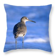 Willet In The Water Throw Pillow
