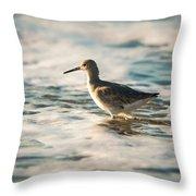 Willet Wading Through The Ocean Foam Throw Pillow