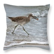Willet With Mole Crab Throw Pillow
