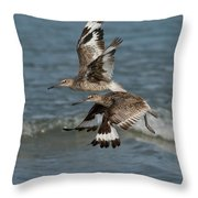 Willets In Flight Showing Molt Throw Pillow