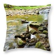 Williams River Headwaters Zen Rocks Throw Pillow
