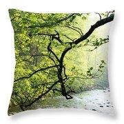 Williams River Mist Throw Pillow