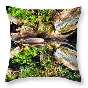 Williams River Reflections Throw Pillow by Thomas R Fletcher