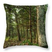 William's Woods Throw Pillow