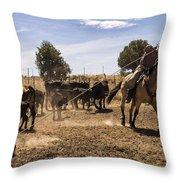 Williamson Valley Roundup 21 Throw Pillow