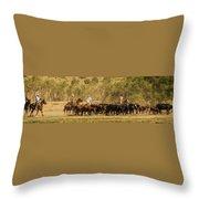 Williamson Valley Roundup 7 Throw Pillow
