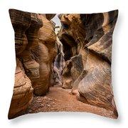 Willis Creek Slot Canyon 6 - Grand Staircase Escalante National Monument Utah Throw Pillow