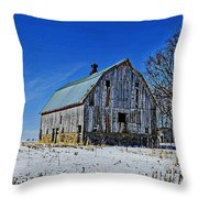 Willow Barn Painting Throw Pillow