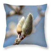 Magnolia Buds Throw Pillow