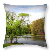 Willow Lake Throw Pillow