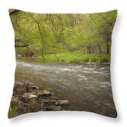 Willow River 3 Throw Pillow