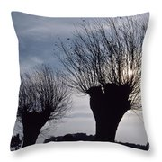 Willow Trees In Winter Throw Pillow