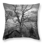 Wilson Lick Ranger Station Throw Pillow by Debra and Dave Vanderlaan
