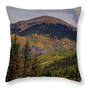Wilson Peak Colorado Throw Pillow