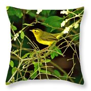 Wilson's Warbler Throw Pillow