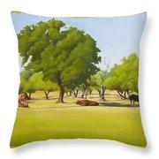 Wimberley Pastoral Throw Pillow