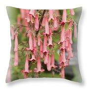 Winchester Fanfare Throw Pillow