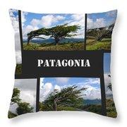 Wind-bent Flag Trees In Tierra Del Fuego Throw Pillow