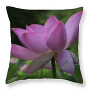 Wind Blown Throw Pillow by Cindy Lark Hartman