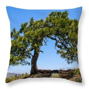 Lonesome Pine Tree Throw Pillow