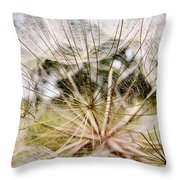 Wind Songs Throw Pillow