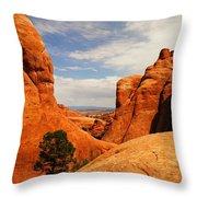 Wind Worn Beauty Throw Pillow