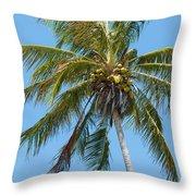 Windblown Coconut Palm Throw Pillow