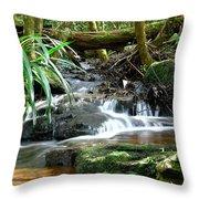 Winding Cascade Throw Pillow