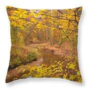 Winding Creek Throw Pillow