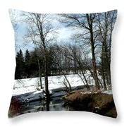 Winding Creek Shows Reflection Throw Pillow