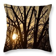 Winding Down The Evening Throw Pillow