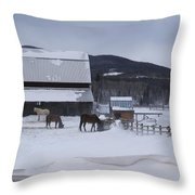 Winding River In Winter  Grand Lake Co Throw Pillow