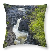 Winding River Pools Throw Pillow
