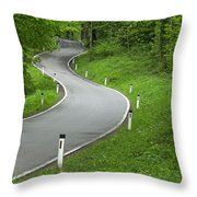Winding Road In The Woods Throw Pillow