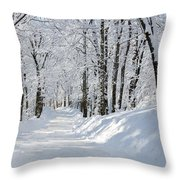 Winding Snowy Road In Winter Throw Pillow