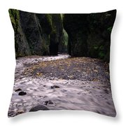 Winding Through Oneonta  Gorge Throw Pillow