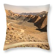 Winding Through The Coxcomb Throw Pillow