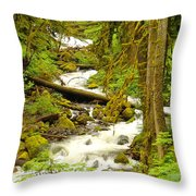Winding Through The Forest Throw Pillow
